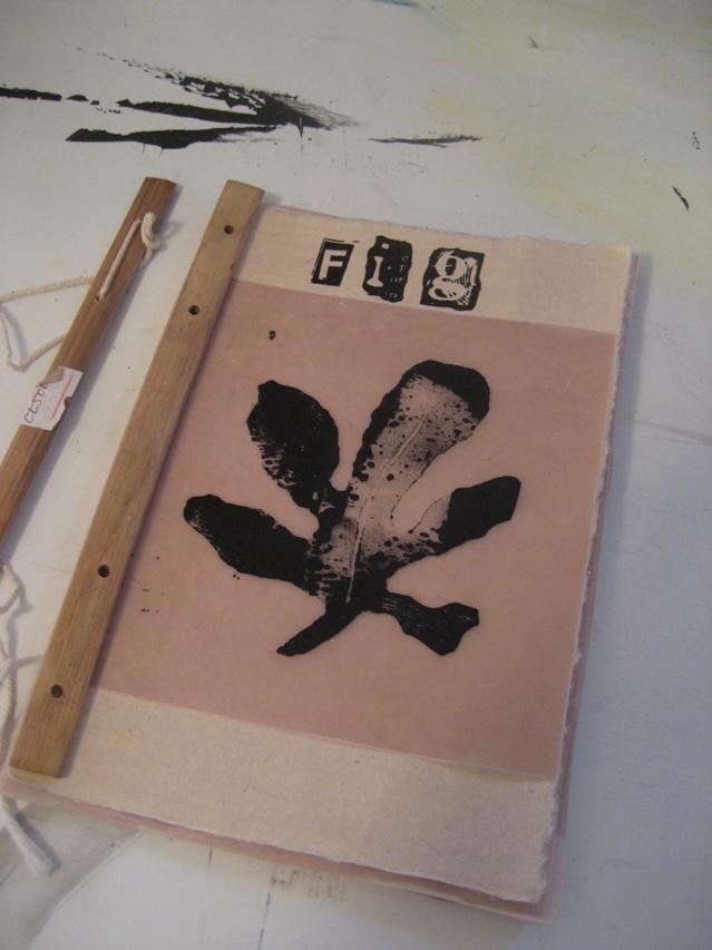 fig book