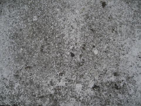 20111002-092526.jpg
