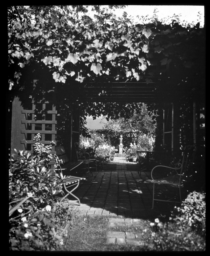 Knight Library Home Garden Pergola looking east Lantern Slide