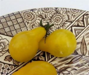 tomatoes:transferware