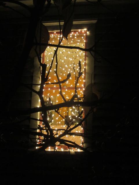 oputside at night 4