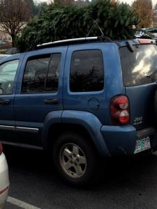 xmas tree car 3