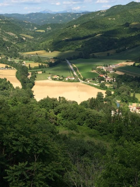 view from Montone