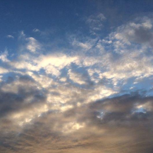 cutler sky