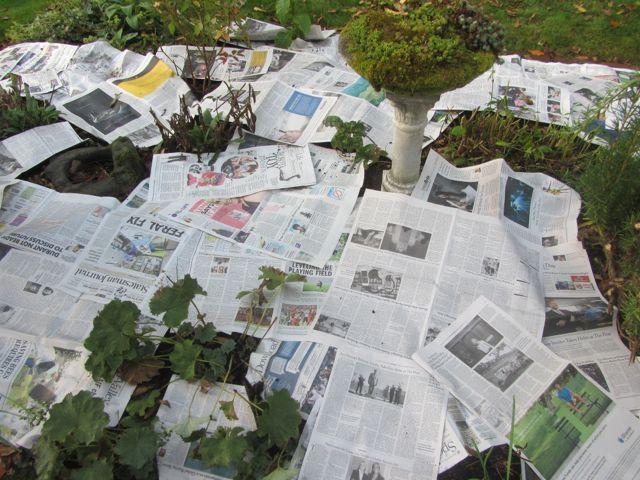 n3ewspaper 2