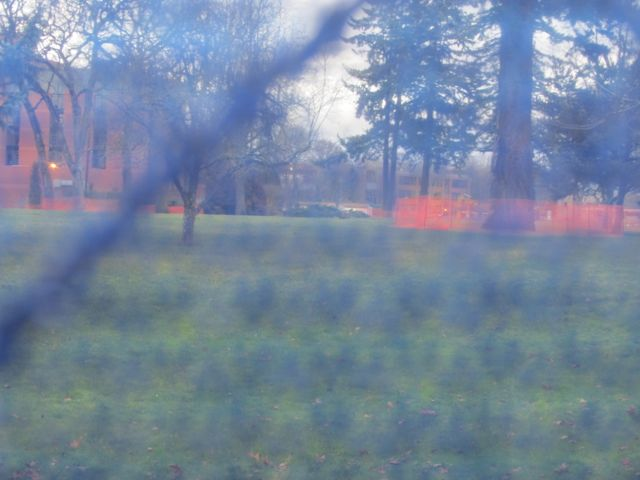 blue fence 3
