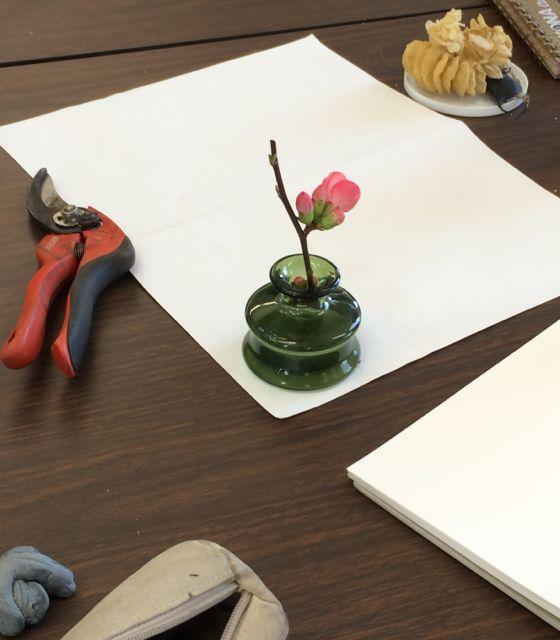 Bonnie L's flower