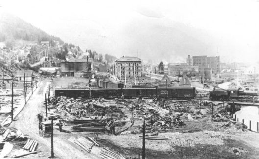 Wallace after the fire