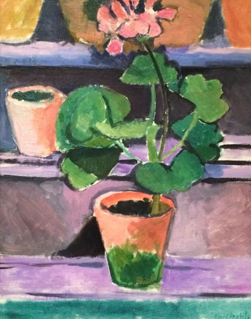 Matisse geraniums
