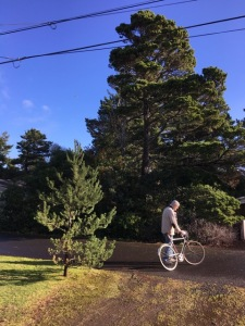bikes 2