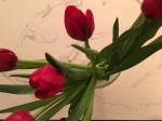 Tulips in the house 3