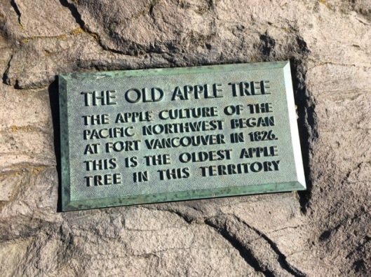 apple tree sign