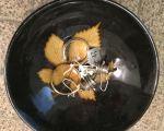 bowl 11