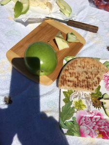 trip iphone picnic