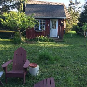 Ttrip writing cottage