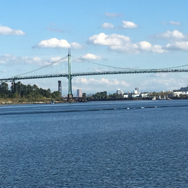 cruise-st-johns-bridge-and-the-city-beyond-1