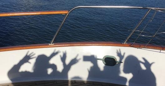 cruise-the-shadows