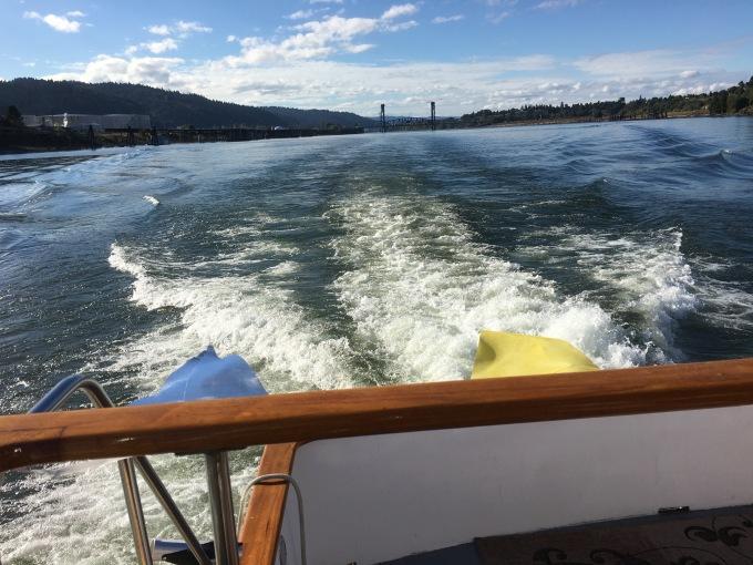 cruise-wake